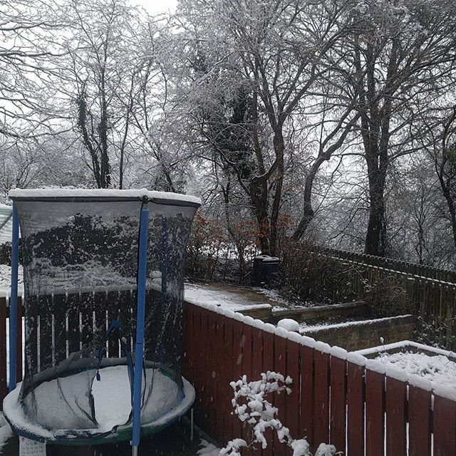 Woke up to this morning. Glad working at home. Sqk's school open as well...